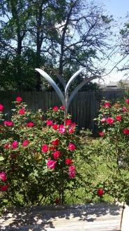 Mark White Art plus roses
